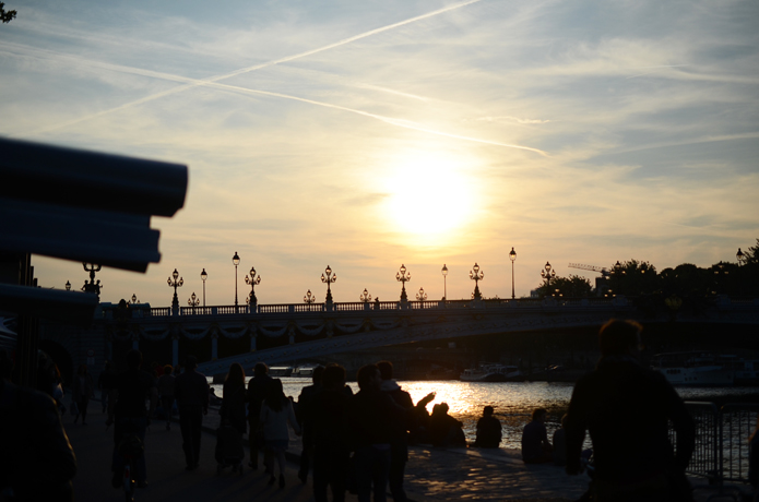 rosabonheur_DSC_1510