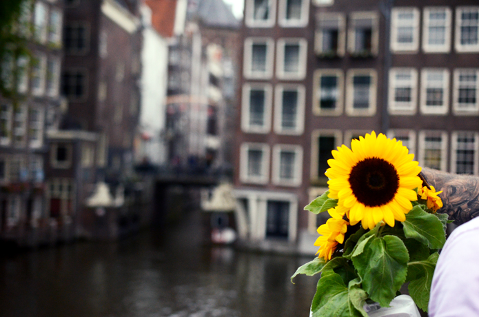 amsterdam_DSC_2208