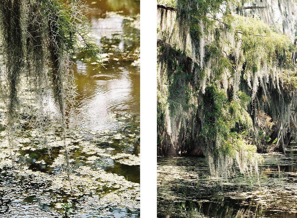 bayou florida gregoire saint martin photography