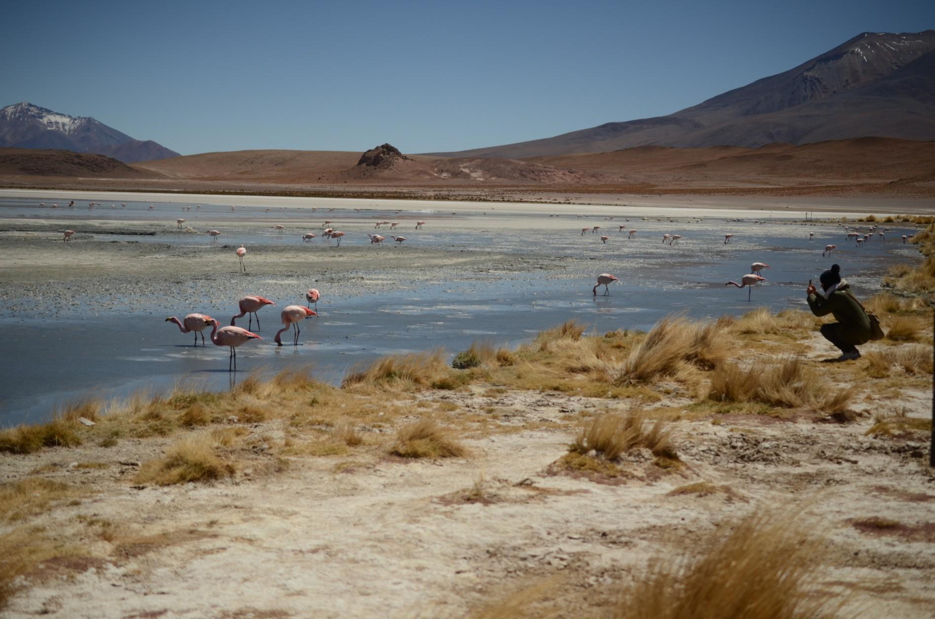la bolivie voyage