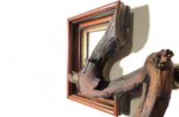 fusion frame daryl cox