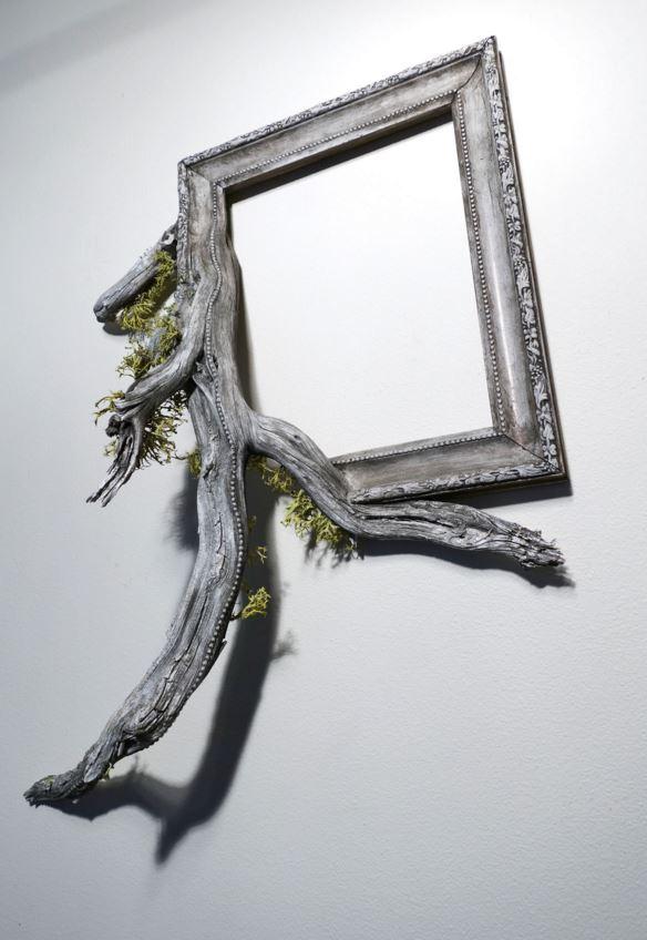 Fusion Frames de Darryl Cox