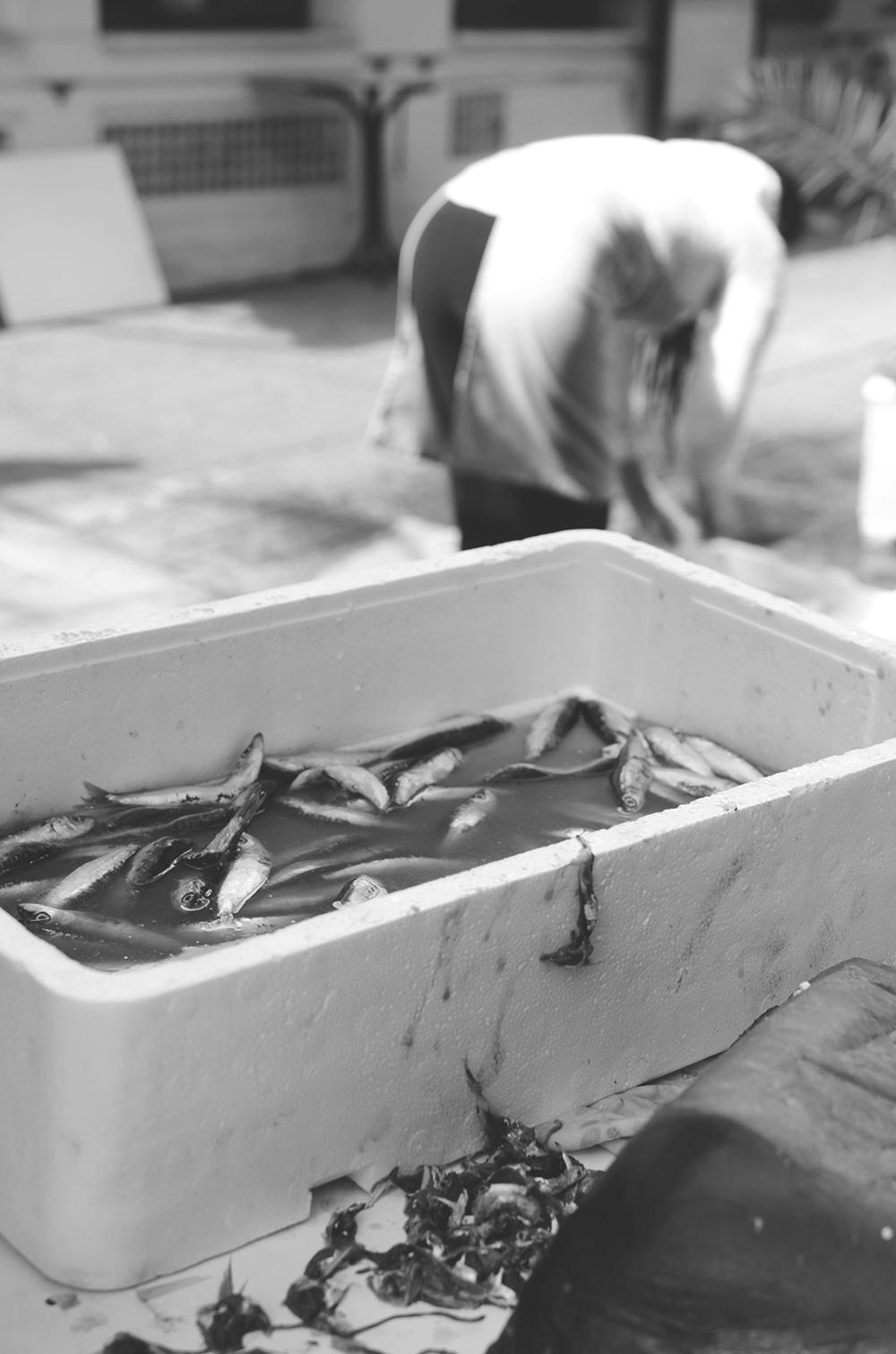 weekend portugal porto fernande et rené sardines nb