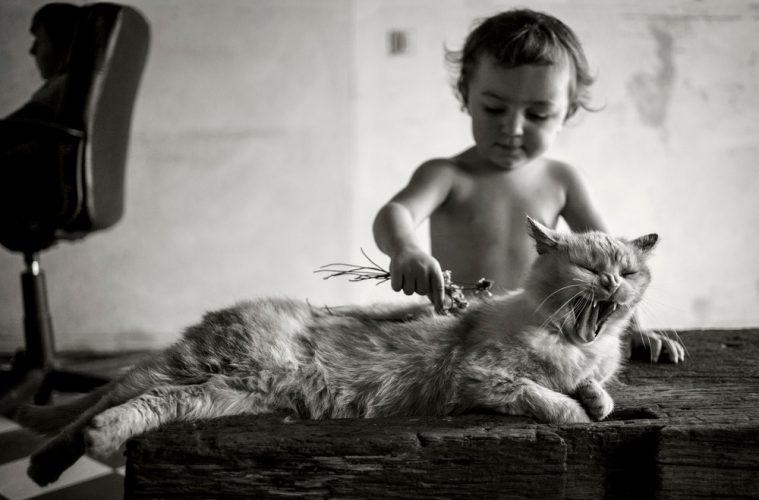 Alain Laboile photographie la famille et la nature