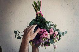 Monsieur marguerite box fleurs ferande et rené